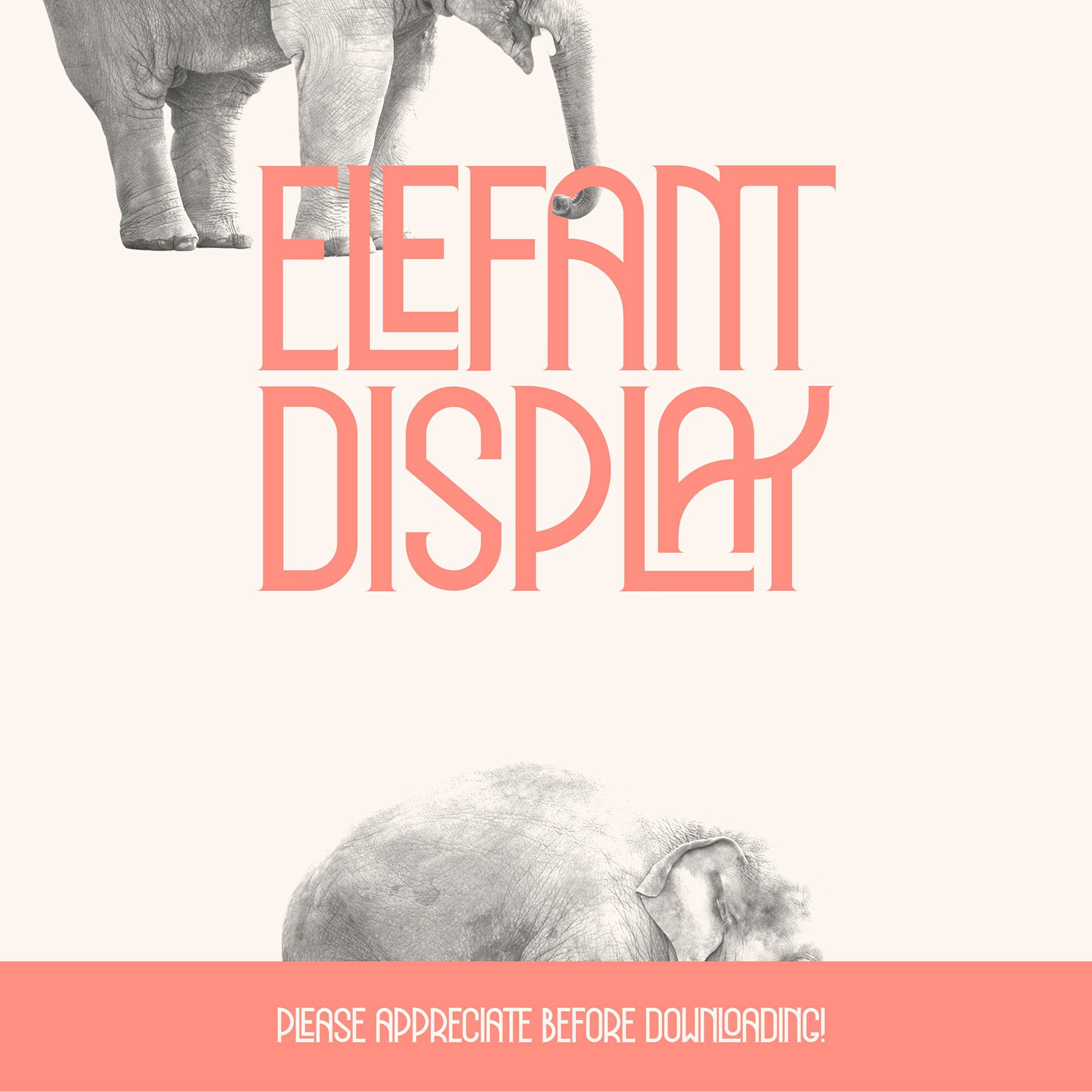 Font Elefant Display