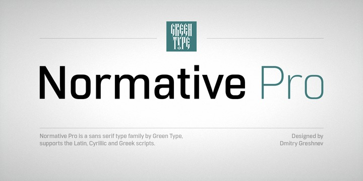 Font Normative Pro